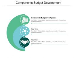 Components Budget Development Ppt Powerpoint Presentation File Graphic Images Cpb