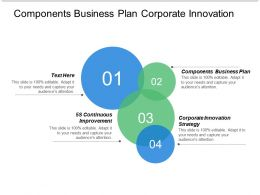 Components Business Plan Corporate Innovation Strategy 5s Continuous Improvement Cpb