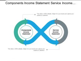 Components Income Statement Service Income Statement Captive Strategy Cpb