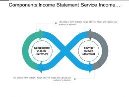 Components Income Statement Service Income Statement Captive Strategy Cpb