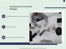 Components Of A Partner Strategy Ppt Powerpoint Presentation Styles Rules