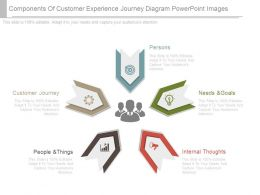 Components Of Customer Experience Journey Diagram Powerpoint Images