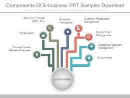 Components Of E Business Ppt Samples Download