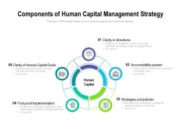 Components Of Human Capital Management Strategy