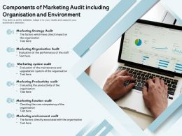Components Of Marketing Audit Including Organisation And Environment