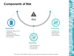 Components Of Risk Ppt Icon Templates
