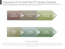 Components Of The Audit Plan Ppt Samples Download