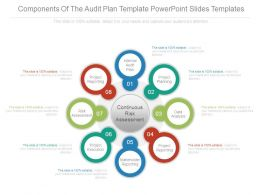 Components Of The Audit Plan Template Powerpoint Slides Templates