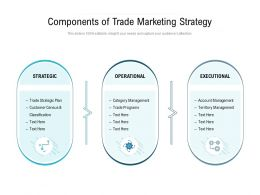Components Of Trade Marketing Strategy
