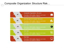 Composite Organization Structure Risk Management Disaster Recovery Professional Proposal Cpb