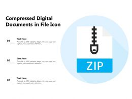 Compressed Digital Documents In File Icon