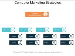 Computer Marketing Strategies Ppt Powerpoint Presentation Inspiration Layout Cpb