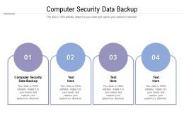 Computer Security Data Backup Ppt Powerpoint Presentation Pictures Professional Cpb
