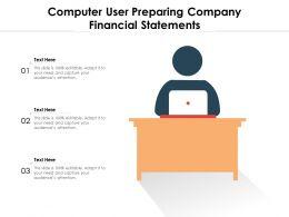 Computer User Preparing Company Financial Statements