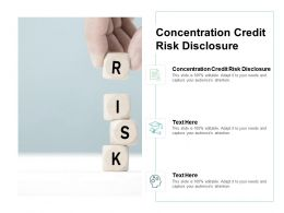 Concentration Credit Risk Disclosure Ppt Powerpoint Presentation Summary Example Cpb