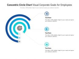 Concentric Circle Chart Visual Corporate Goals For Employees Infographic Template