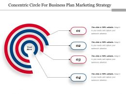 Concentric Circle For Business Plan Marketing Strategy Ppt Design