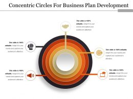 Concentric Circles For Business Plan Development Ppt Images