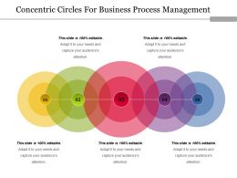 Concentric Circles For Business Process Management Ppt Model