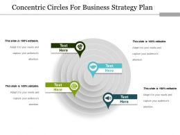 concentric_circles_for_business_strategy_plan_ppt_images_Slide01