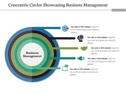 Concentric Circles Showcasing Business Management Ppt Sample