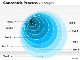 Concentric Process Diagram For Business