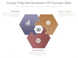 Concept Of Big Data Monetization Ppt Examples Slides