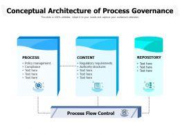 Conceptual Architecture Of Process Governance