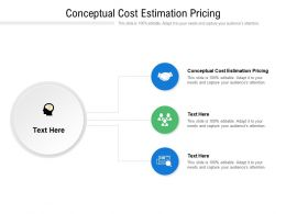 Conceptual Cost Estimation Pricing Ppt Powerpoint Presentation File Templates Cpb