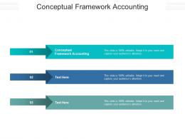 Conceptual Framework Accounting Ppt Powerpoint Presentation Gallery Picture Cpb