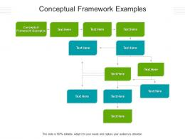 Conceptual Framework Examples Ppt Powerpoint Presentation Styles Format Ideas Cpb
