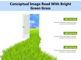 Conceptual Image Road With Bright Green Grass