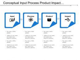 Conceptual Input Process Product Impact Framework