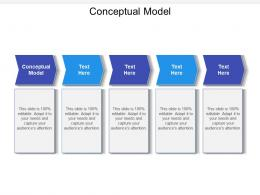Conceptual Model Ppt Powerpoint Presentation Professional Objects Cpb