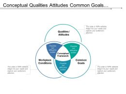 Conceptual Qualities Attitudes Common Goals Venn Framework
