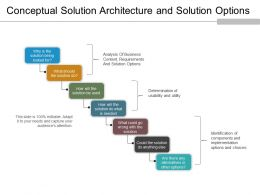 Conceptual Solution Architecture And Solution Options Ppt Slide