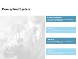 Conceptual System Ppt Powerpoint Presentation Summary Outfit Cpb