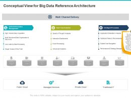 Conceptual View For Big Data Reference Architecture Ppt Powerpoint Presentation File Designs Download