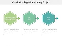 Conclusion Digital Marketing Project Ppt Powerpoint Presentation Guidelines Cpb
