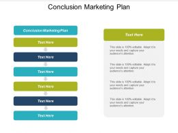 Conclusion Marketing Plan Ppt Powerpoint Presentation Layouts Skills Cpb
