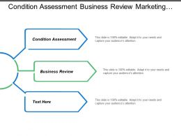 Condition Assessment Business Review Marketing Background Company Scope Swot