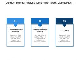 Conduct Internal Analysis Determine Target Market Plan Value Optimization