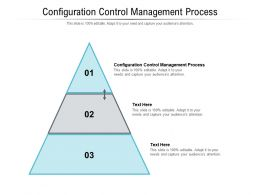 Configuration Control Management Process Ppt Powerpoint Presentation Gallery Gridlines Cpb