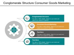 Conglomerate Structure Consumer Goods Marketing Customer Satisfaction Customer Retention Cpb
