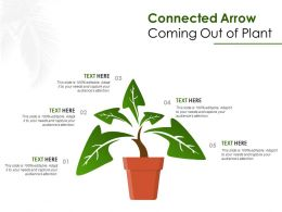 Connected Arrow Coming Out Of Plant