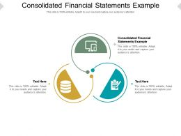Consolidated Financial Statements Example Ppt Powerpoint Presentation Pictures Cpb