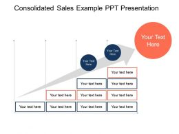 Consolidated Sales Example Ppt Presentation