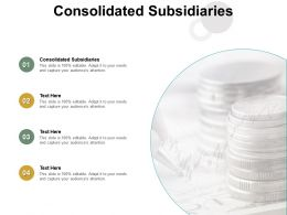Consolidated Subsidiaries Ppt Powerpoint Presentation Ideas Sample Cpb