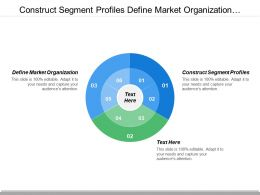 Construct Segment Profiles Define Market Organization Review Performance