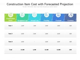Construction Item Cost With Forecasted Projection